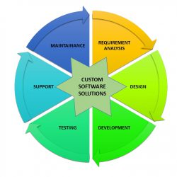 custom-software-solution-ves